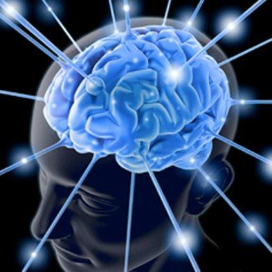 elearning e cérebro